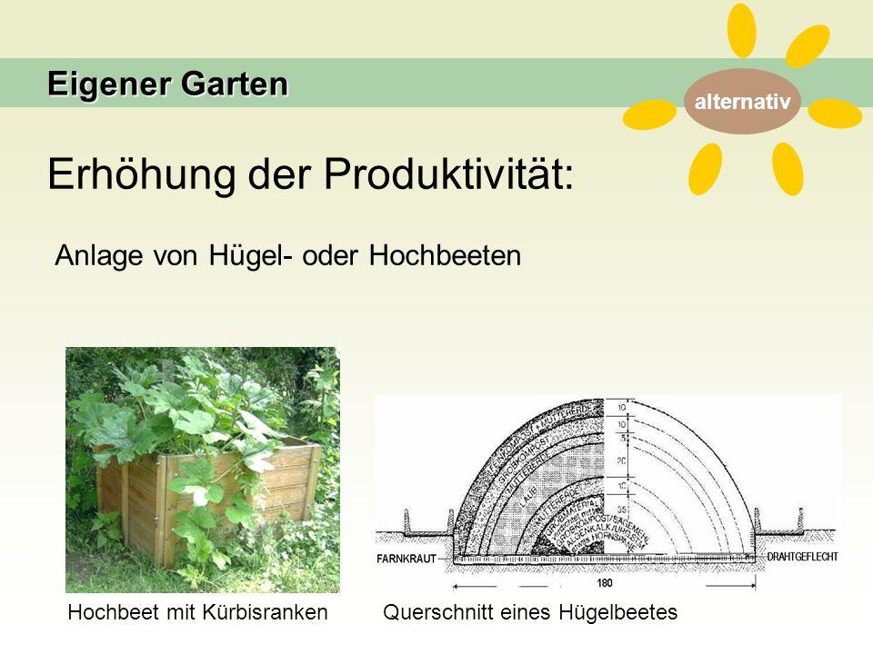 alternativ Erhöhung der Produktivität: Anlage von Hügel- oder Hochbeeten Hochbeet mit KürbisrankenQuerschnitt eines Hügelbeetes Eigener Garten