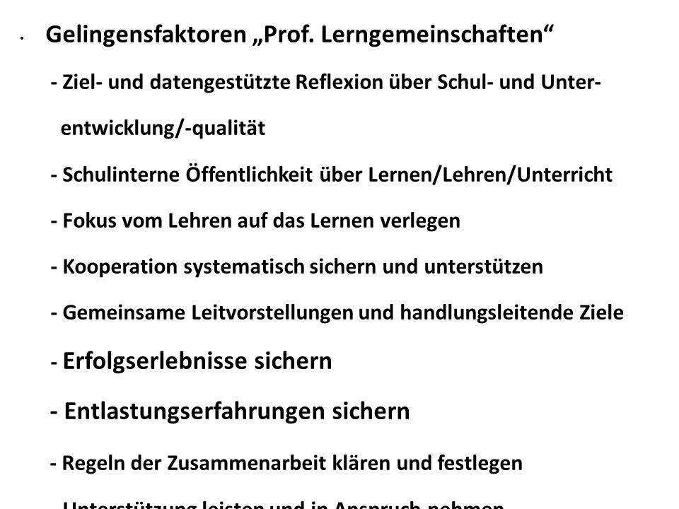 """Gelingensfaktoren """"Prof."""