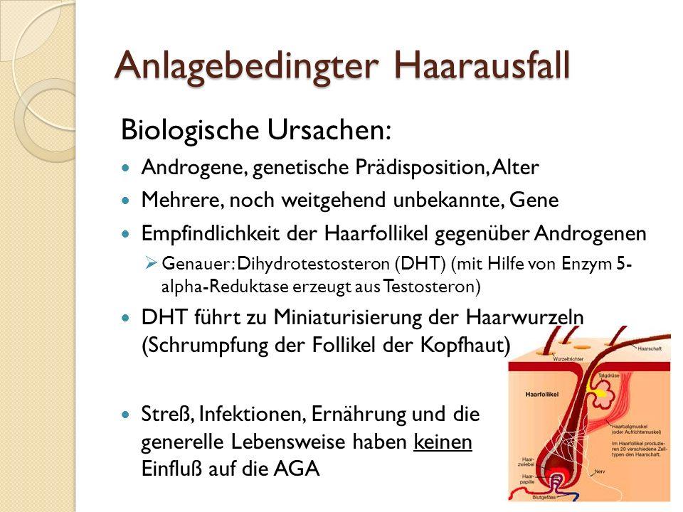 6 Anlagebedingter Haarausfall Biologische Ursachen: Androgene, genetische Prädisposition, Alter Mehrere, noch weitgehend unbekannte, Gene Empfindlichkeit der Haarfollikel gegenüber Androgenen  Genauer: Dihydrotestosteron (DHT) (mit Hilfe von Enzym 5- alpha-Reduktase erzeugt aus Testosteron) DHT führt zu Miniaturisierung der Haarwurzeln (Schrumpfung der Follikel der Kopfhaut) Streß, Infektionen, Ernährung und die generelle Lebensweise haben keinen Einfluß auf die AGA