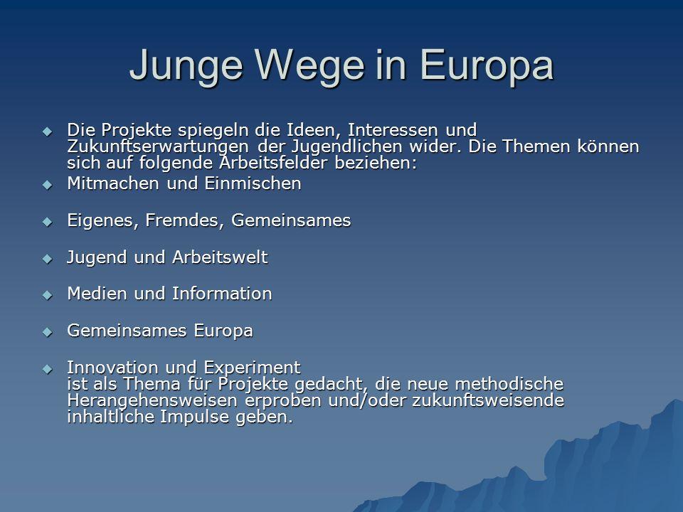 Junge Wege in Europa  Die Projekte spiegeln die Ideen, Interessen und Zukunftserwartungen der Jugendlichen wider.