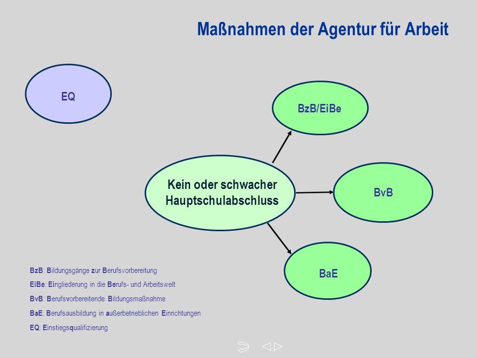 Maßnahmen der Agentur für Arbeit Kein oder schwacher Hauptschulabschluss EQ BzB/EiBe BvB BaE BzB : B ildungsgänge z ur B erufsvorbereitung EiBe : Ei ngliederung in die Be rufs- und Arbeitswelt BvB : B erufs v orbereitende B ildungsmaßnahme BaE : B erufsausbildung in a ußerbetrieblichen E inrichtungen EQ : E instiegs q ualifizierung