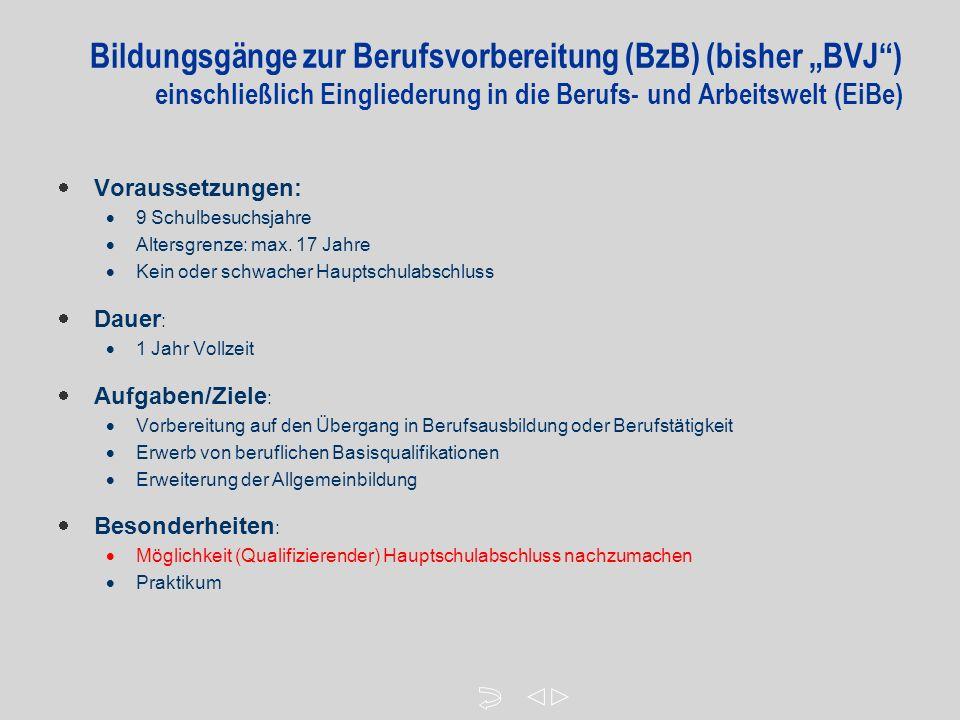"""Bildungsgänge zur Berufsvorbereitung (BzB) (bisher """"BVJ ) einschließlich Eingliederung in die Berufs- und Arbeitswelt (EiBe)  Voraussetzungen:  9 Schulbesuchsjahre  Altersgrenze: max."""