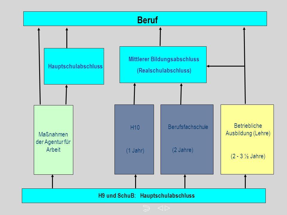 H9 und SchuB: Hauptschulabschluss Betriebliche Ausbildung (Lehre) (2 - 3 ½ Jahre) Berufsfachschule (2 Jahre) Beruf H10 (1 Jahr) Maßnahmen der Agentur für Arbeit Mittlerer Bildungsabschluss (Realschulabschluss) Hauptschulabschluss