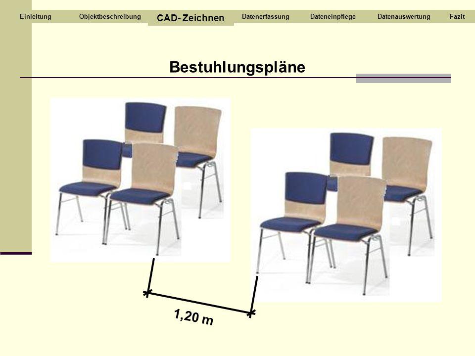 Bestuhlungspläne 1,20 m Objektbeschreibung CAD- Zeichnen DatenerfassungDateneinpflegeDatenauswertungFazitEinleitung