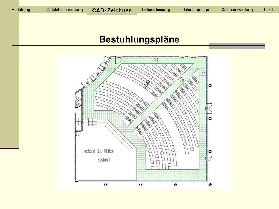 Bestuhlungspläne Objektbeschreibung CAD- Zeichnen DatenerfassungDateneinpflegeDatenauswertungFazitEinleitung