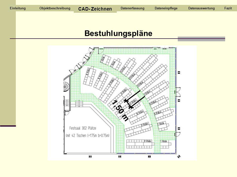 Bestuhlungspläne 1,50 m Objektbeschreibung CAD- Zeichnen DatenerfassungDateneinpflegeDatenauswertungFazitEinleitung