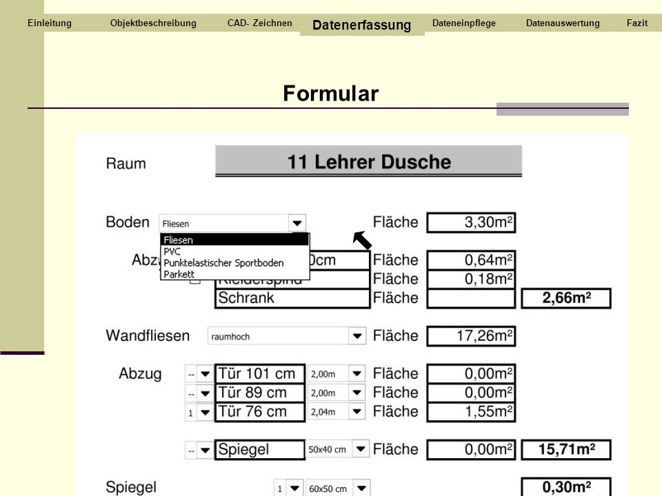 Formular ObjektbeschreibungCAD- Zeichnen Datenerfassung DateneinpflegeDatenauswertungFazitEinleitung