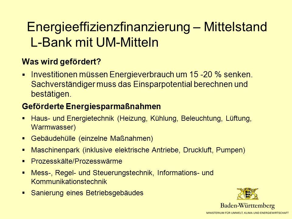 Was wird gefördert?  Investitionen müssen Energieverbrauch um 15 -20 % senken. Sachverständiger muss das Einsparpotential berechnen und bestätigen. G