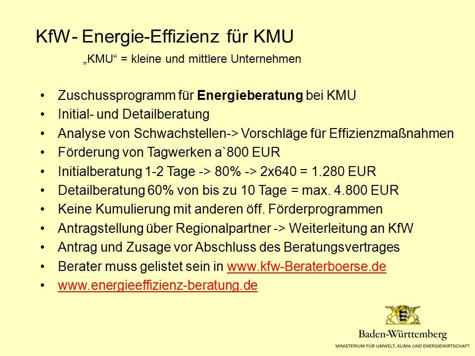 """KfW- Energie-Effizienz für KMU """"KMU"""" = kleine und mittlere Unternehmen Zuschussprogramm für Energieberatung bei KMU Initial- und Detailberatung Analys"""