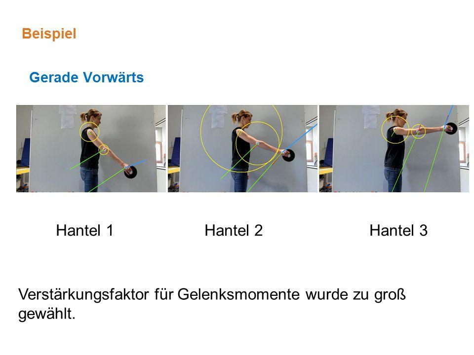 Gerade Vorwärts Hantel 1Hantel 3Hantel 2 Beispiel Verstärkungsfaktor für Gelenksmomente wurde zu groß gewählt.