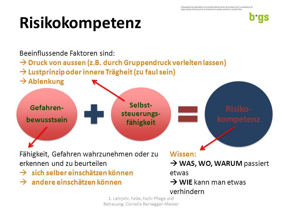 Risikokompetenz Gefahren- bewusstsein Selbst- steuerungs- fähigkeit Risiko- kompetenz 1.