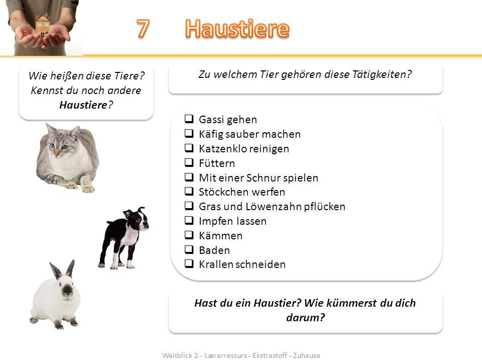 Weitblick 2 - Lærerressurs - Ekstrastoff - Zuhause Wie heißen diese Tiere.