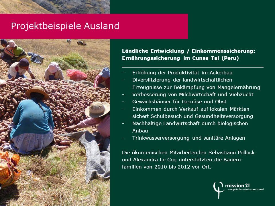 Projektbeispiele Ausland Ländliche Entwicklung / Einkommenssicherung: Ernährungssicherung im Cunas-Tal (Peru) -Erhöhung der Produktivität im Ackerbau