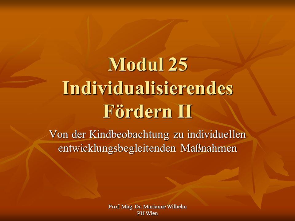 Prof. Mag. Dr. Marianne Wilhelm PH Wien Modul 25 Individualisierendes Fördern II Von der Kindbeobachtung zu individuellen entwicklungsbegleitenden Maß