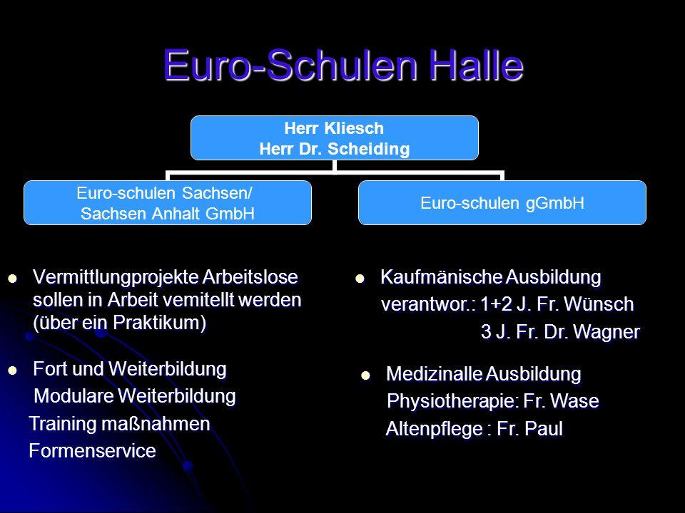Euro-Schulen Halle Vermittlungprojekte Arbeitslose sollen in Arbeit vemitellt werden (über ein Praktikum) Vermittlungprojekte Arbeitslose sollen in Ar