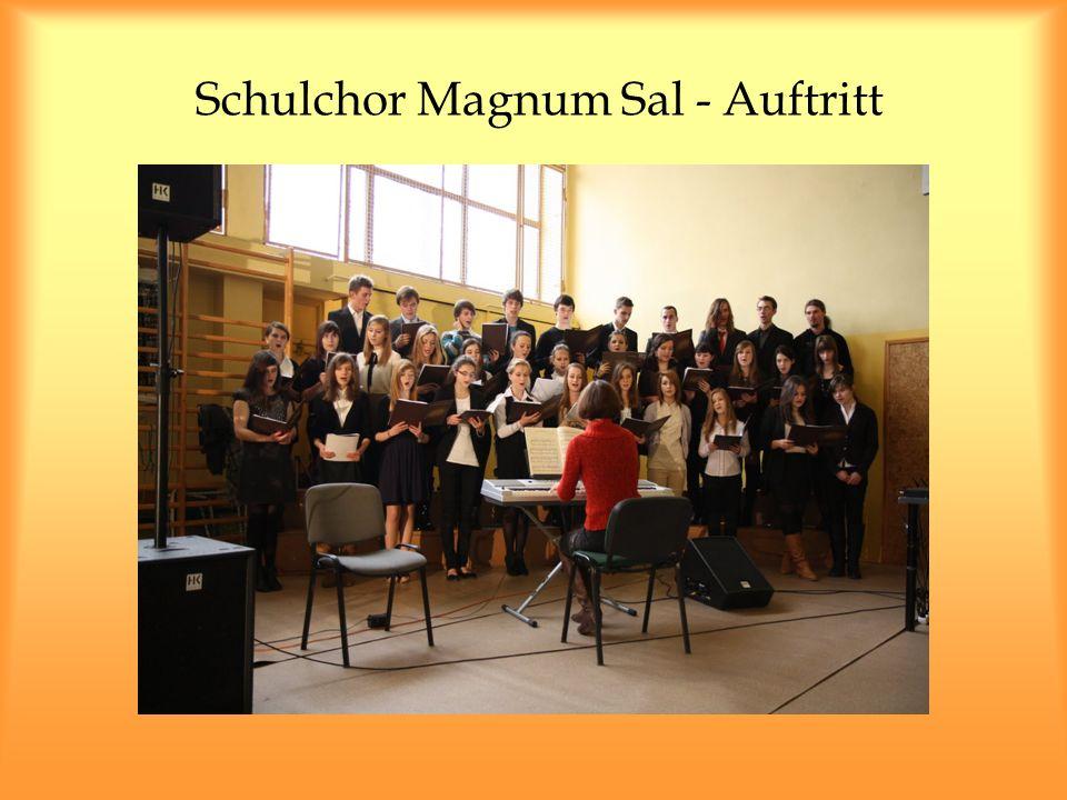 Schulchor Magnum Sal - Auftritt