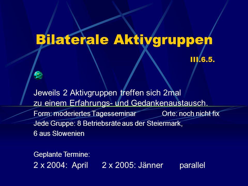 Bilaterale Aktivgruppen III.6.5.