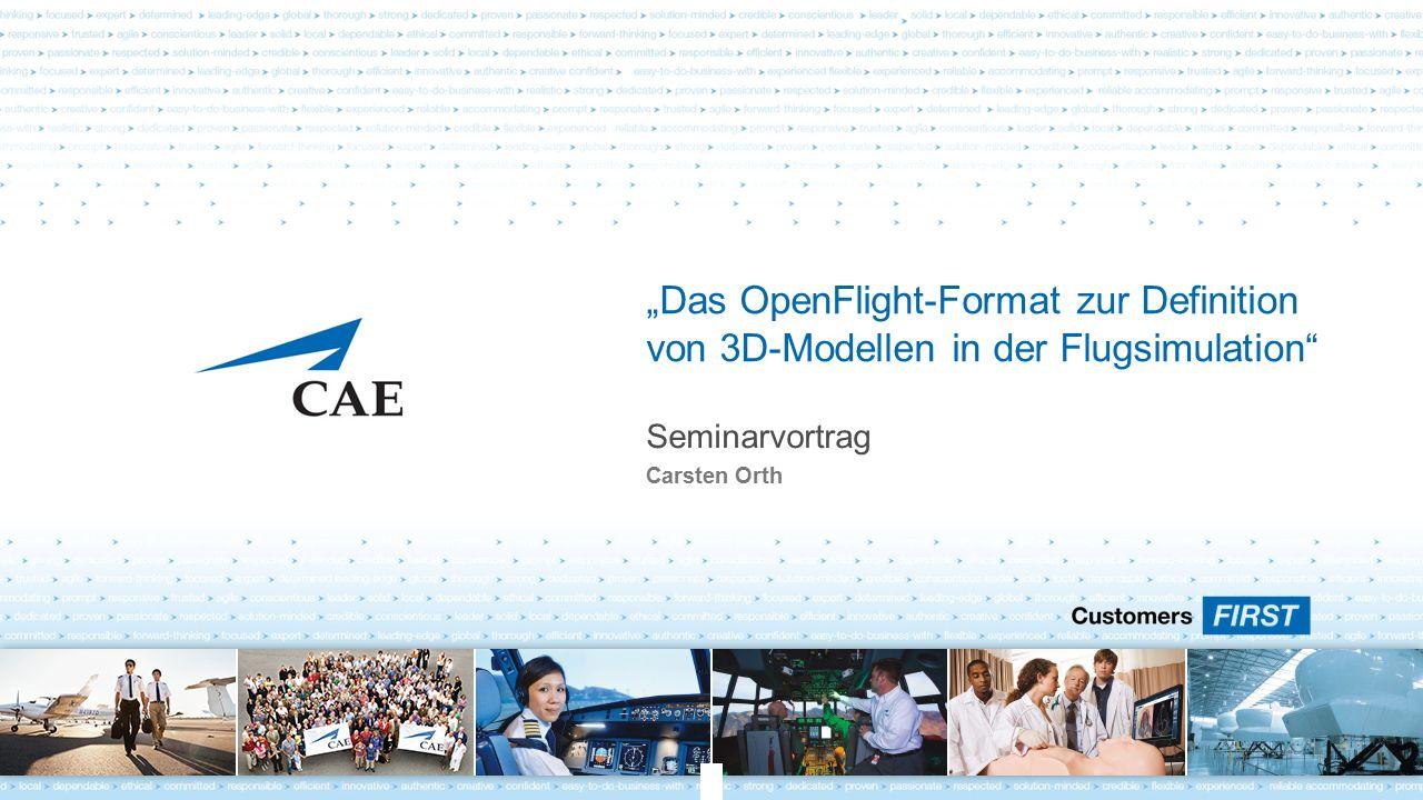 """Seminarvortrag Carsten Orth """"Das OpenFlight-Format zur Definition von 3D-Modellen in der Flugsimulation"""