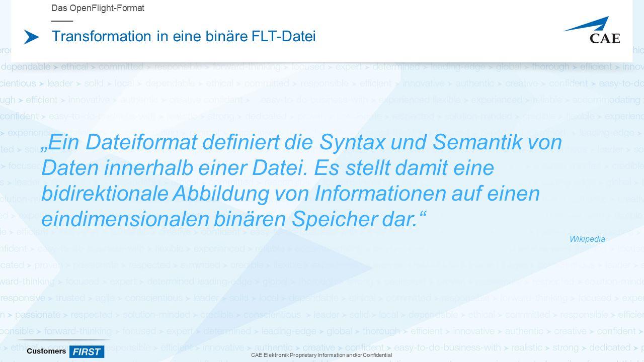 """CAE Elektronik Proprietary Information and/or Confidential Transformation in eine binäre FLT-Datei Das OpenFlight-Format """"Ein Dateiformat definiert die Syntax und Semantik von Daten innerhalb einer Datei."""