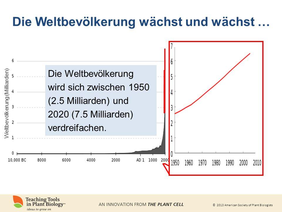 © 2013 American Society of Plant Biologists Die Weltbevölkerung wächst und wächst … Die Weltbevölkerung wird sich zwischen 1950 (2.5 Milliarden) und 2020 (7.5 Milliarden) verdreifachen.