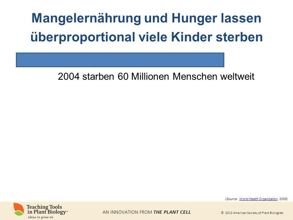© 2013 American Society of Plant Biologists Mangelernährung und Hunger lassen überproportional viele Kinder sterben 2004 starben 60 Millionen Menschen weltweit (Source: World Health Organization, 2008)