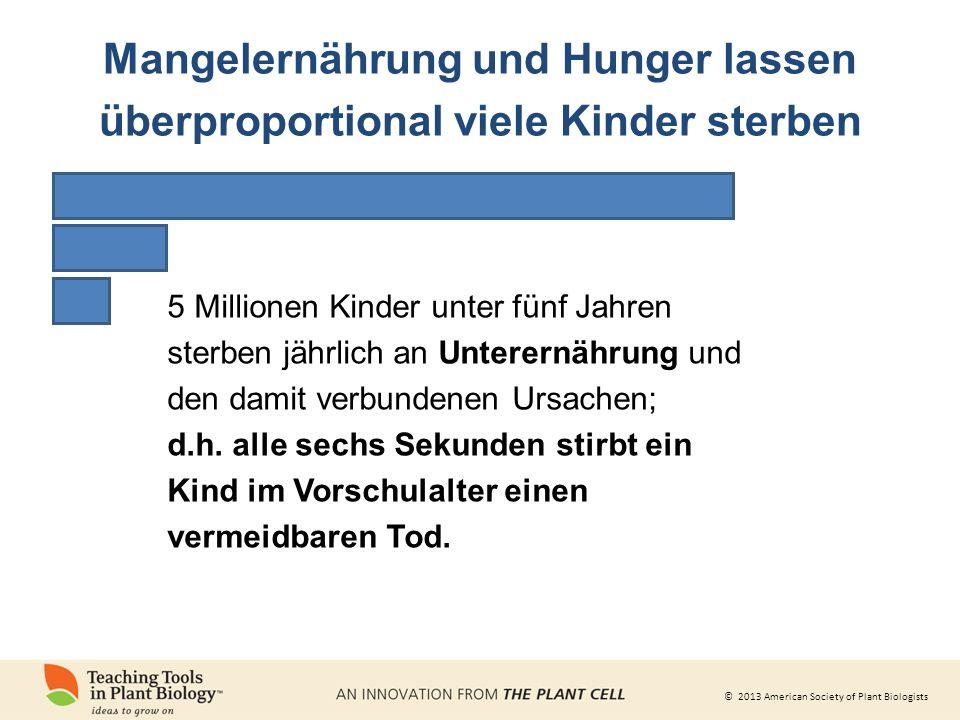 © 2013 American Society of Plant Biologists 5 Millionen Kinder unter fünf Jahren sterben jährlich an Unterernährung und den damit verbundenen Ursachen; d.h.