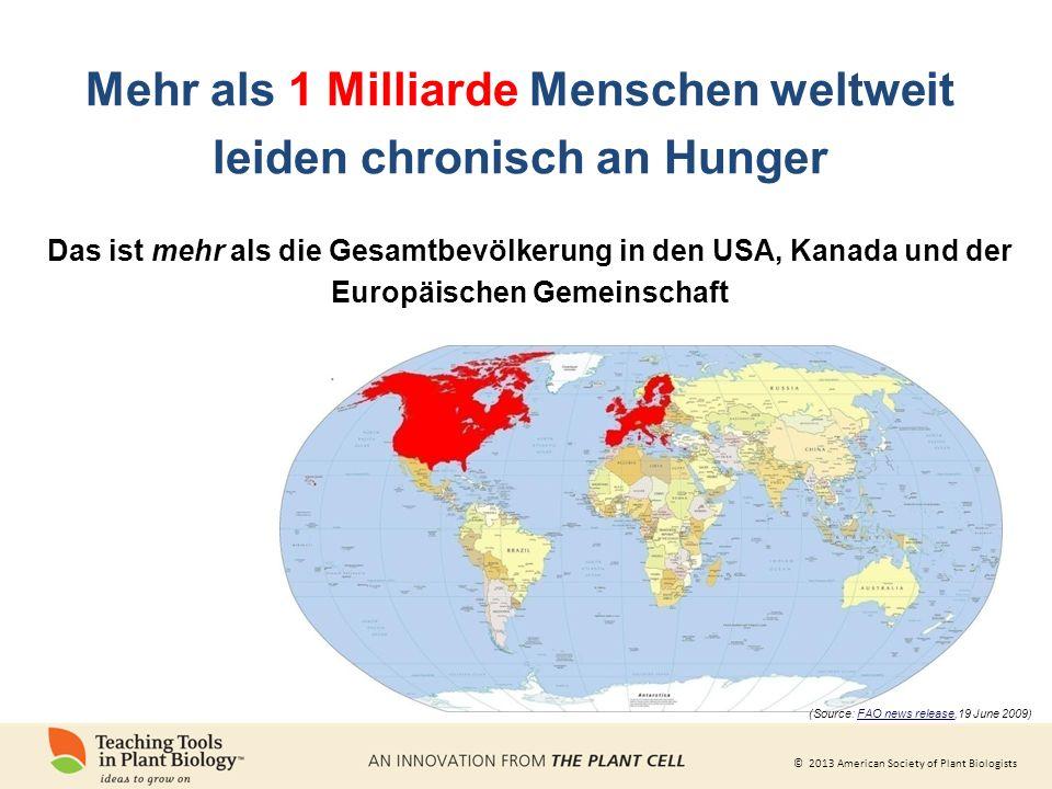 © 2013 American Society of Plant Biologists Mehr als 1 Milliarde Menschen weltweit leiden chronisch an Hunger Das ist mehr als die Gesamtbevölkerung in den USA, Kanada und der Europäischen Gemeinschaft (Source: FAO news release,19 June 2009)