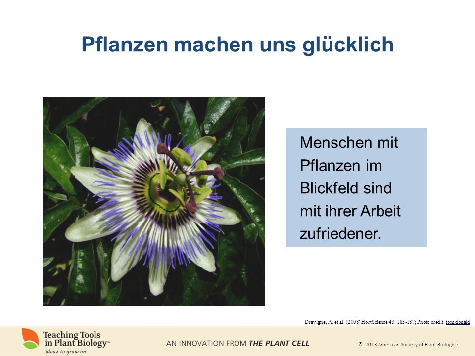 © 2013 American Society of Plant Biologists Pflanzen machen uns glücklich Dravigne, A. et al. (2008) HortScience 43: 183-187; Photo credit: tom donald