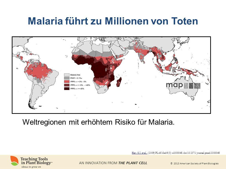 © 2013 American Society of Plant Biologists Malaria führt zu Millionen von Toten Weltregionen mit erhöhtem Risiko für Malaria.