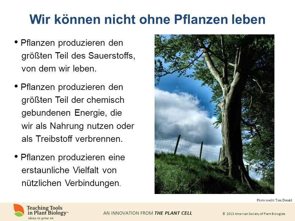 © 2013 American Society of Plant Biologists Warum Pflanzen studieren? WHY STUDY PLANTS?