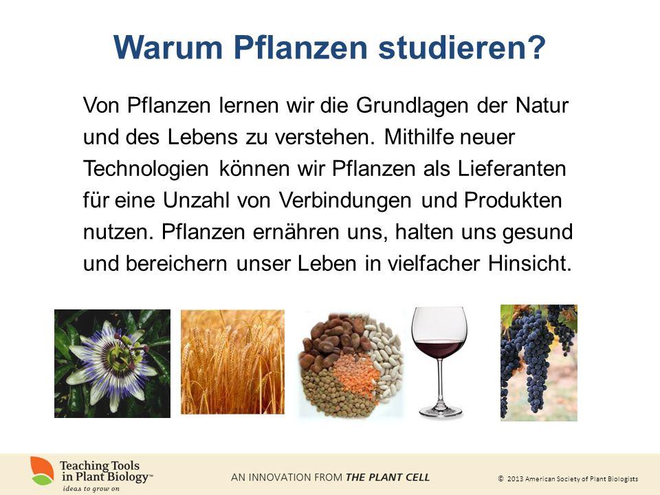 © 2013 American Society of Plant Biologists Warum Pflanzen studieren.