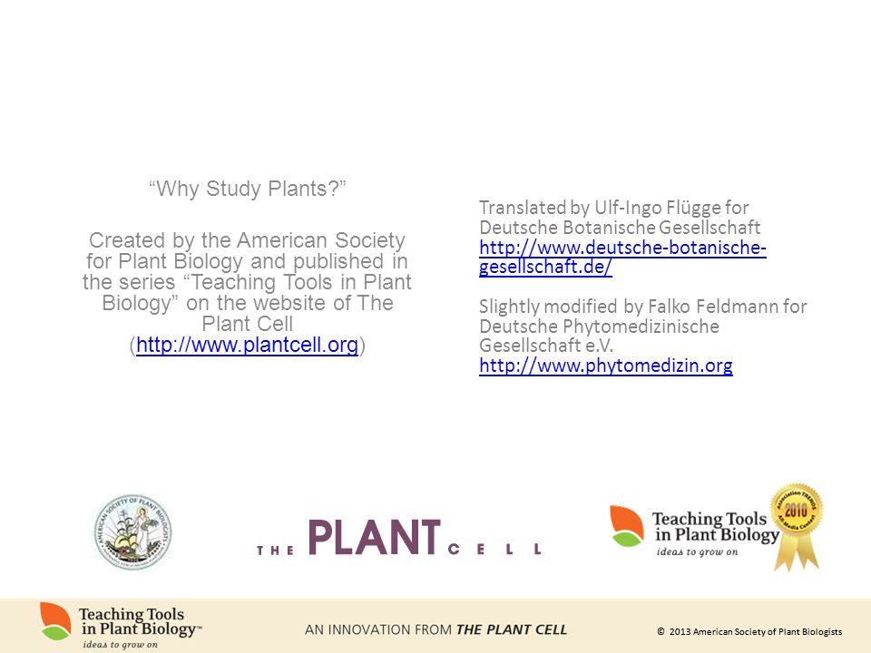 © 2013 American Society of Plant Biologists Why Study Plants Created by the American Society for Plant Biology and published in the series Teaching Tools in Plant Biology on the website of The Plant Cell (  Translated by Ulf-Ingo Flügge for Deutsche Botanische Gesellschaft   gesellschaft.de/   gesellschaft.de/ Slightly modified by Falko Feldmann for Deutsche Phytomedizinische Gesellschaft e.V.