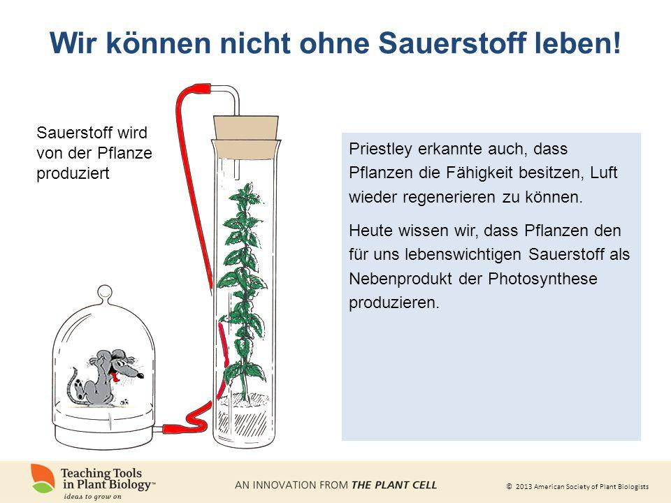 © 2013 American Society of Plant Biologists Priestley erkannte auch, dass Pflanzen die Fähigkeit besitzen, Luft wieder regenerieren zu können.