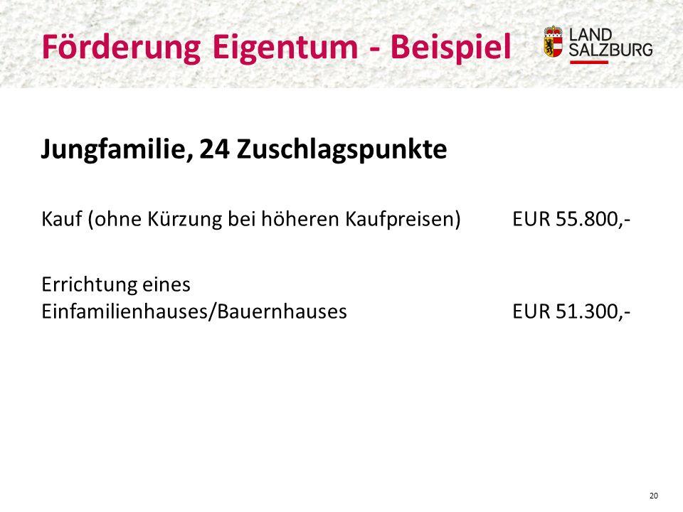 Jungfamilie, 24 Zuschlagspunkte Kauf (ohne Kürzung bei höheren Kaufpreisen)EUR 55.800,- Errichtung eines Einfamilienhauses/BauernhausesEUR 51.300,- Förderung Eigentum - Beispiel 20