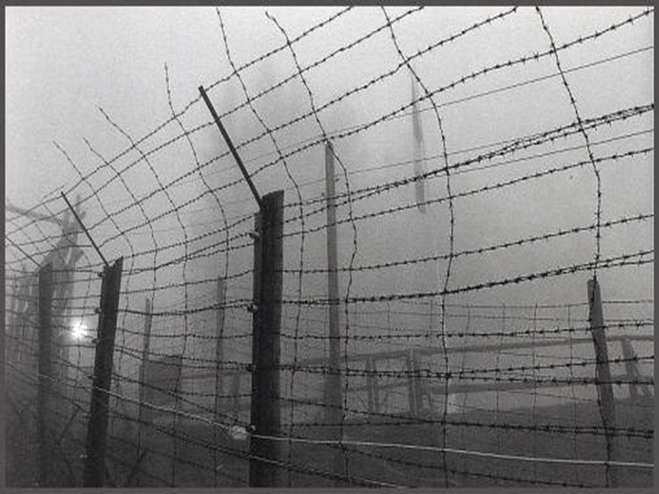 Begriff Bezeichnet jegliche Art von Sammel-, Internierungs-, Gefangenen-, Vernichtungs-,Flüchtlings- und Arbeitslagern Sagt nichts über den Zweck über ein solches Lager aus Im Bezug auf den Nationalsozialismus in Deutschland 1933-1945 verbindet man den Begriff vor allem mit der staatlichen Verfolgung und Ermordung von Andersdenkenden und anderweitig gesellschaftlich Ausgegrenzten, insbesondere mit der europäischen Judenverfolgung,sowie mir dem Holocaust Die Nazis selbst verwendeten den Begriff ohne Unterscheidung zwischen Arbeits- und Vernichtungslager