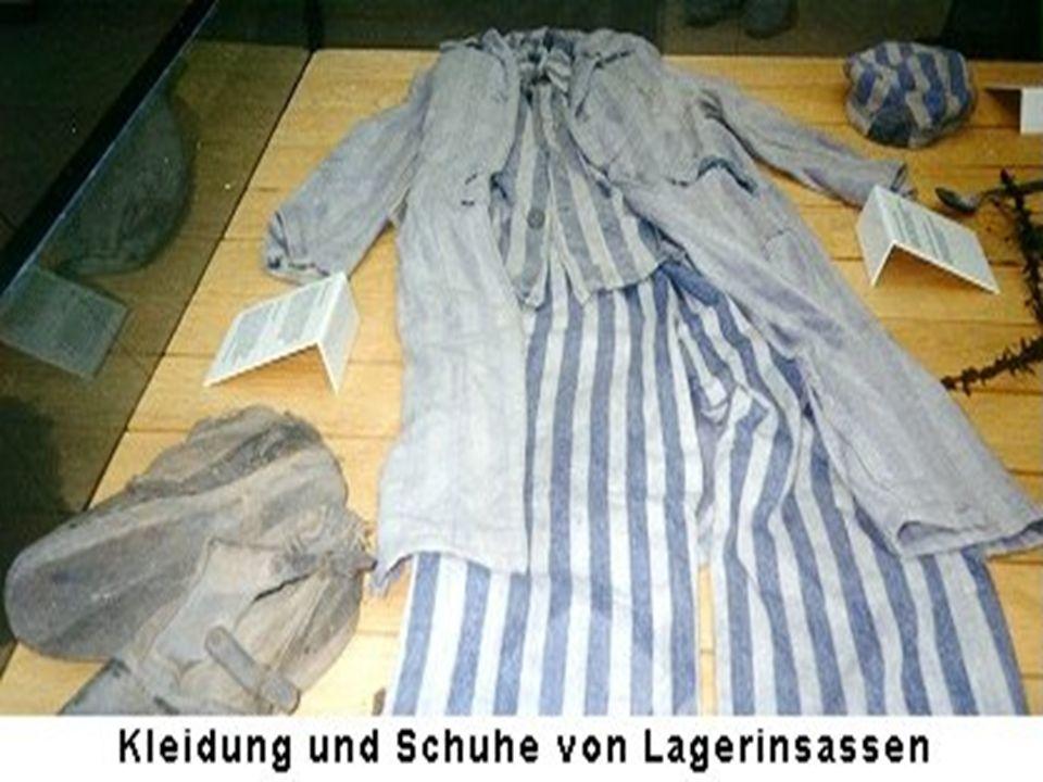 """Die Häftlinge waren zudem ihren Bewachern ausgesetzt Befolgten die Häftlinge die Regel der """"Lagerordnung """"Frühsport zu machen, wobei sie durch den Schlamm geschickt werden, so wurden sie daraufhin wegen ihrer schmutzigen Kleidung bestraft Oft waren sie der Witterung schutzlos ausgeliefert, da sie keine Häuser zum Schlafen hatten, ganz zu schweigen von einem Schlafplatz"""
