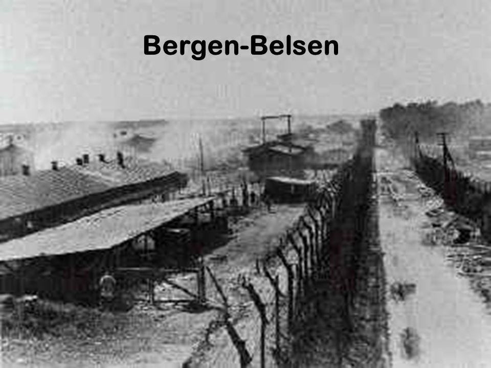 Das KZ Bergen-Belsen Geschichte: Errichtung eines Truppenübungsplatzes im Zuge der deutschen Aufrüstung 1936: Errichtung eines Lagers mit 30 Baracken in denen etwa 3000 deutsche und polnische Arbeiter untergebracht waren.