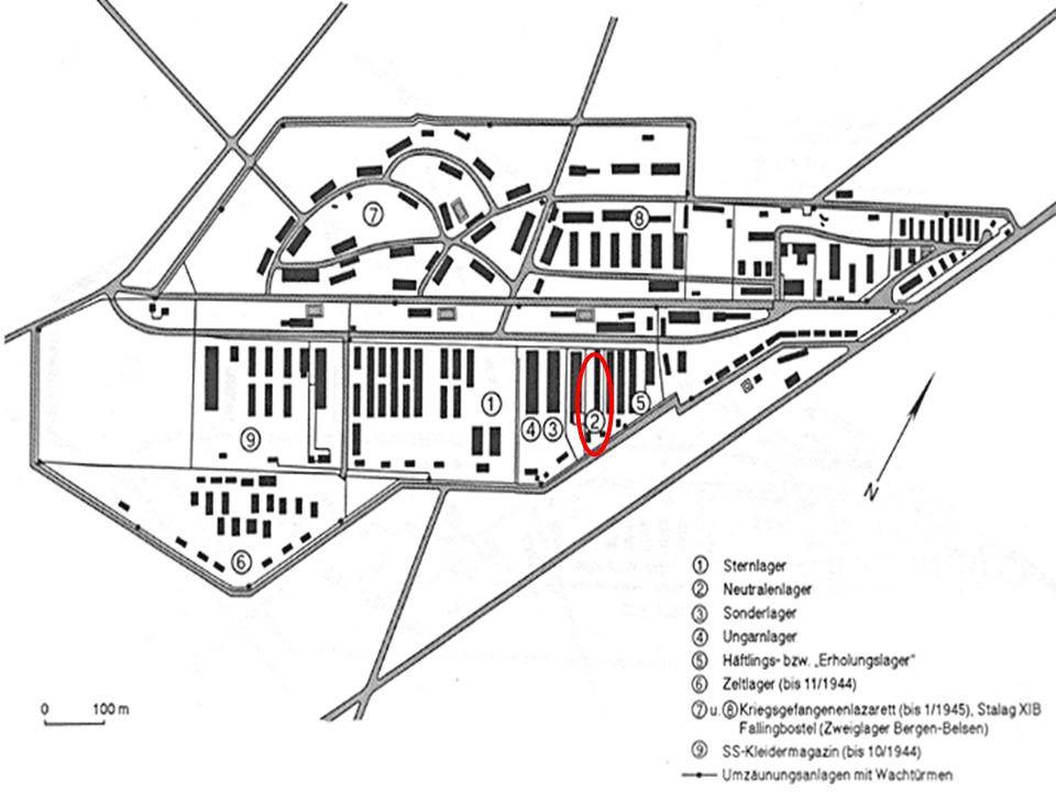 Sonderlager und Ungarnlager: Ab Mitte 1943 waren hier mehrere tausend polnische Juden untergebracht Diese verfügten meist über provisorische Papiere südamerikanischer Staaten Keine Arbeitspflicht, da sie über die Machenschaften der SS in Polen wussten Isolierung Nur etwa 350 von ihnen überlebt, die Restlichen wurden in Auschwitz ermordet
