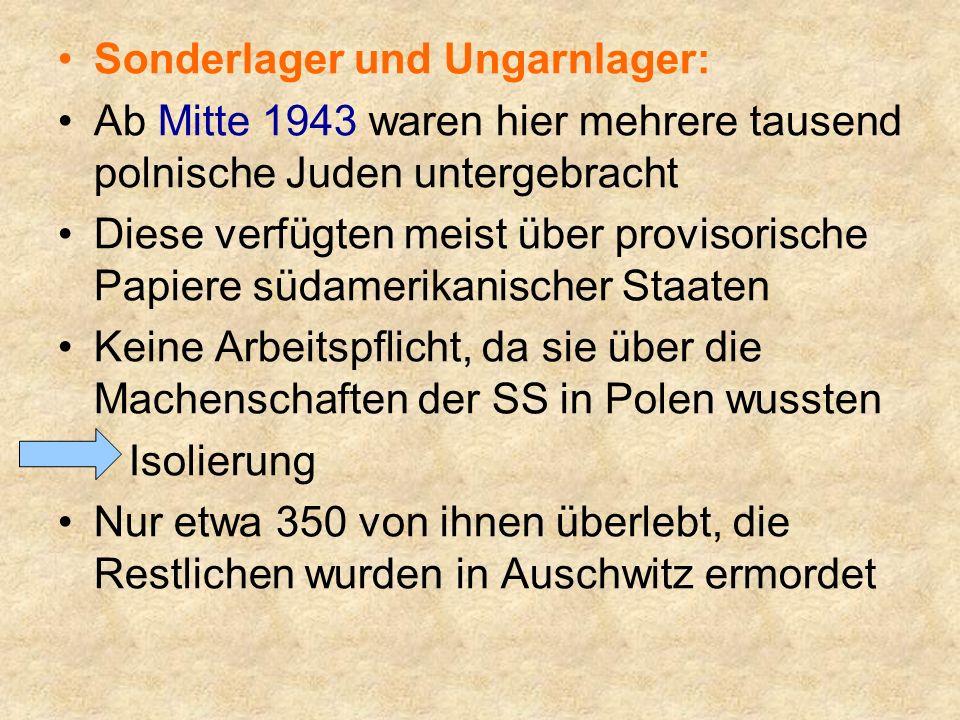 Das Ungarnlager entstand im Juli 1944 für die 1683 ungarischen Juden errichtet.
