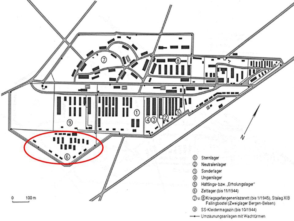Kriegsgefangenenlazarett & Zweiglager Bergen-Belsen Das Lazarett bestand von Anfang an Befindet sich im ehemaligem Arbeitslager 1.200 Betten, Versorgte den Wehrkreis XI Häufigste Krankheiten waren Tuberkulose, Fleckfieber, Hungerödeme und Verletzungen