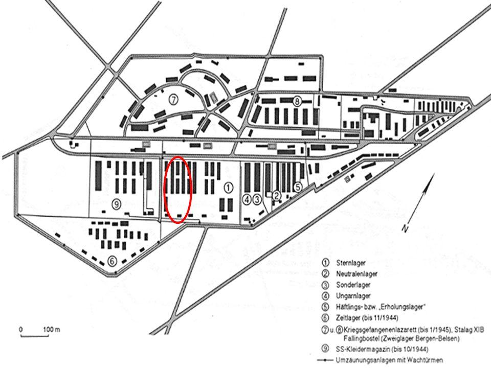 Häftlingslager II: Seit Herbst 1944, da die Häftlingszahlen rapide stiegen Das Häftlingslager I reichte nicht mehr aus Das Sternenlager wird deshalb erheblich verkleinert Männliche Insassen Ein Teil dieses Lager wird daraufhin jedoch zu einer Isolierbaracke, in der Typhuskranke untergebracht waren