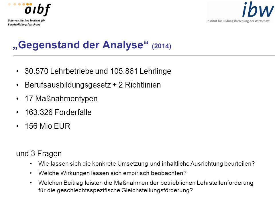 """""""Gegenstand der Analyse"""" (2014) 30.570 Lehrbetriebe und 105.861 Lehrlinge Berufsausbildungsgesetz + 2 Richtlinien 17 Maßnahmentypen 163.326 Förderfäll"""