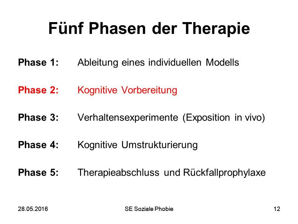 28.05.2016SE Soziale Phobie1228.05.2016SE Soziale Phobie12 Fünf Phasen der Therapie Phase 1: Ableitung eines individuellen Modells Phase 2: Kognitive