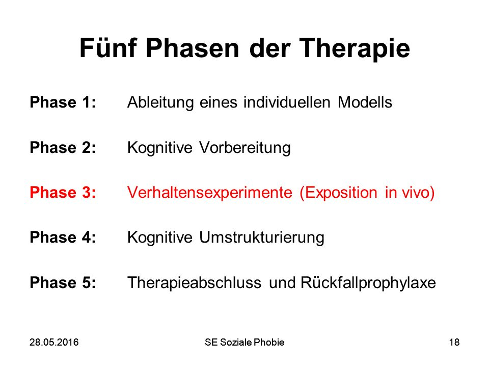 28.05.2016SE Soziale Phobie1828.05.2016SE Soziale Phobie18 Fünf Phasen der Therapie Phase 1: Ableitung eines individuellen Modells Phase 2: Kognitive