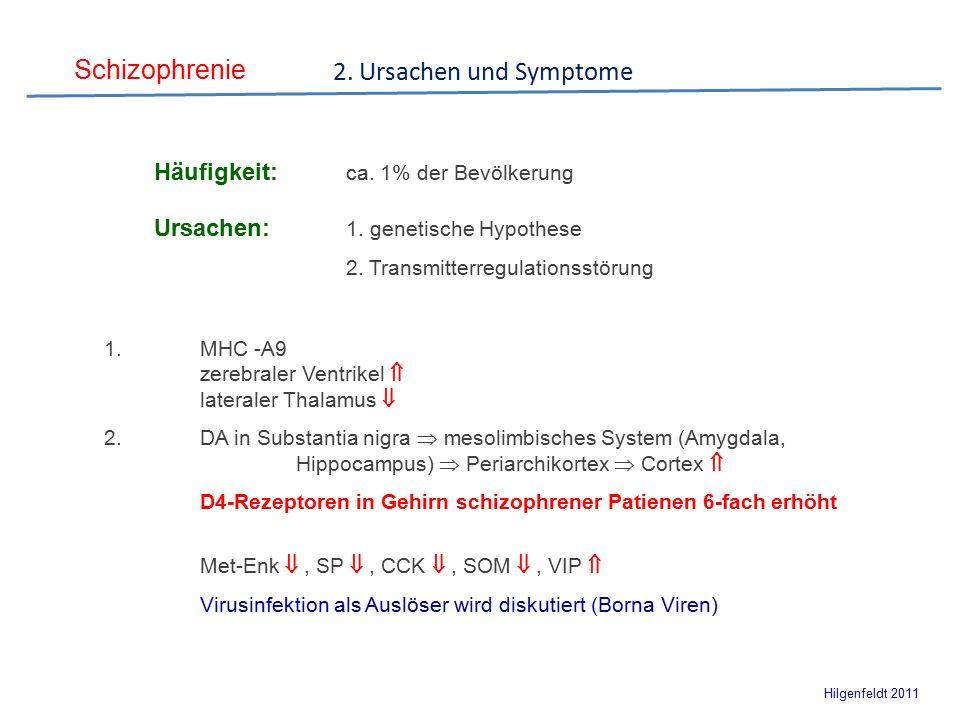 Schizophrenie Hilgenfeldt 2011 Häufigkeit: ca. 1% der Bevölkerung Ursachen: 1.