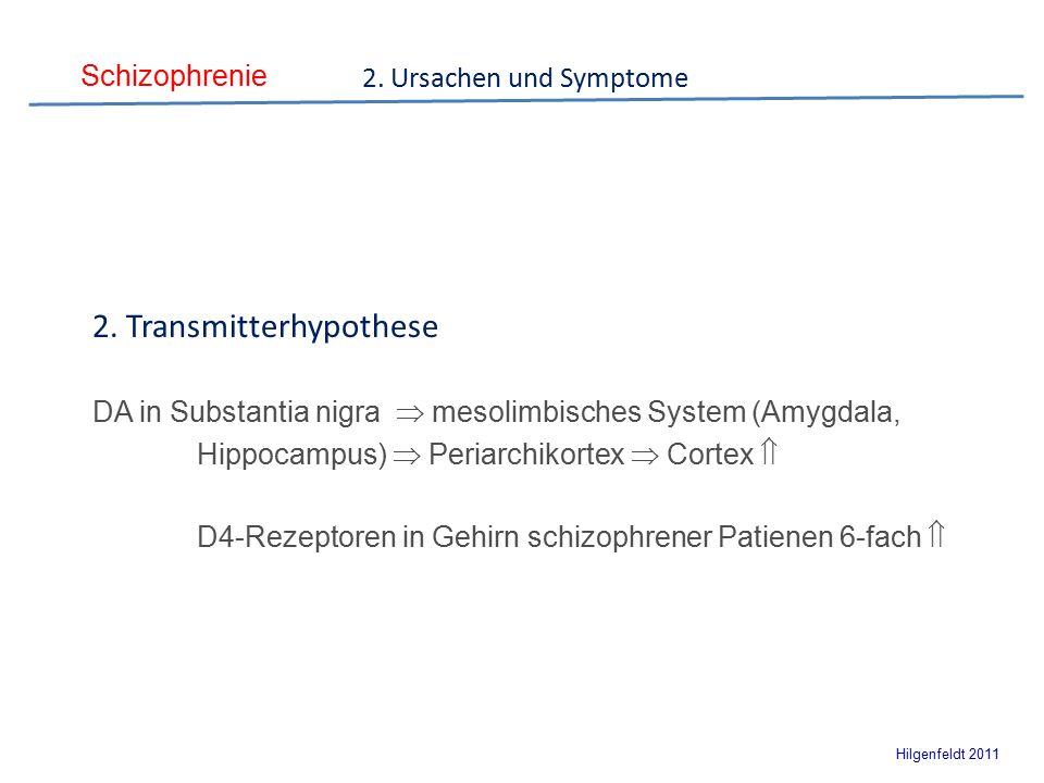 Schizophrenie Hilgenfeldt 2011 2. Ursachen und Symptome 2.