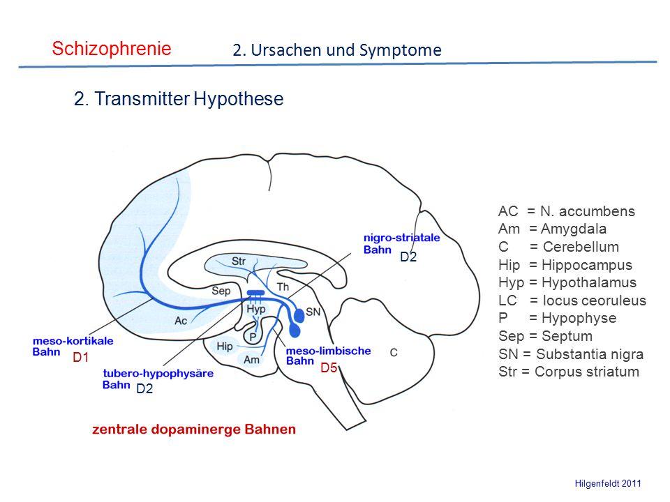 Schizophrenie Hilgenfeldt 2011 AC = N.
