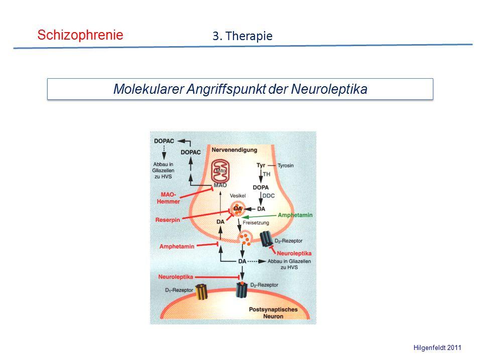 Schizophrenie Hilgenfeldt 2011 3. Therapie Molekularer Angriffspunkt der Neuroleptika