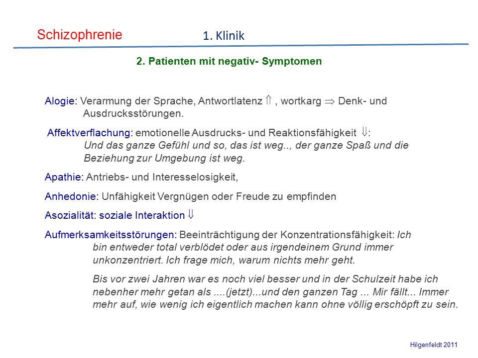 Schizophrenie Hilgenfeldt 2011 2. Ursachen und Symptome