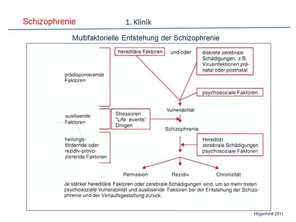 Schizophrenie Hilgenfeldt 2011 Multifaktorielle Entstehung der Schizophrenie 1. Klinik
